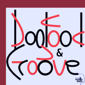 Dog Food and Groove